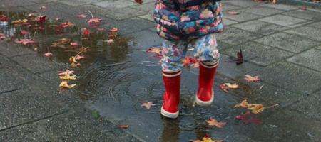 regenlaarsjes